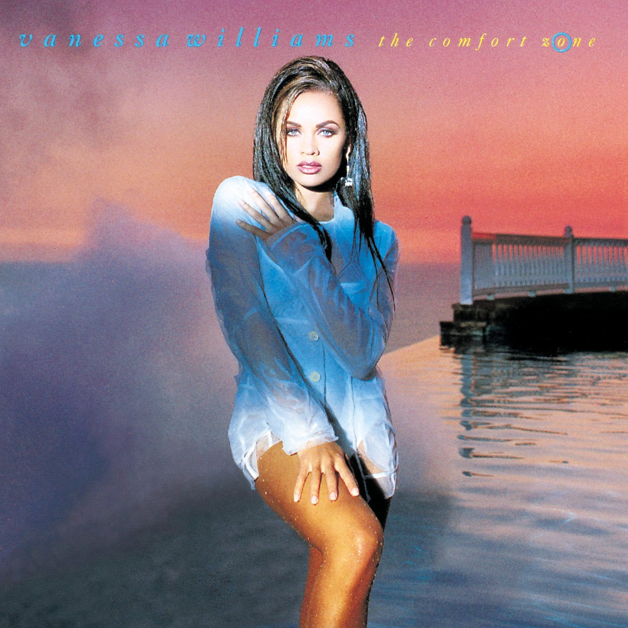 Vanessa Williams The Comfort Zone